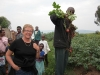 Healthy, tasty vegetables for the community